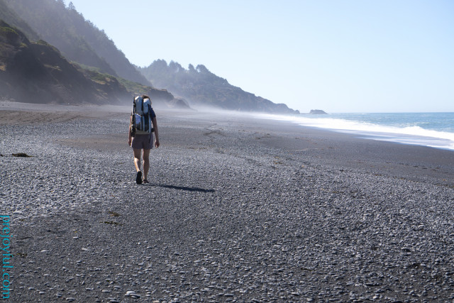 Beach walking with the porter. This is a particularly nice beach along California's Lost Coast.