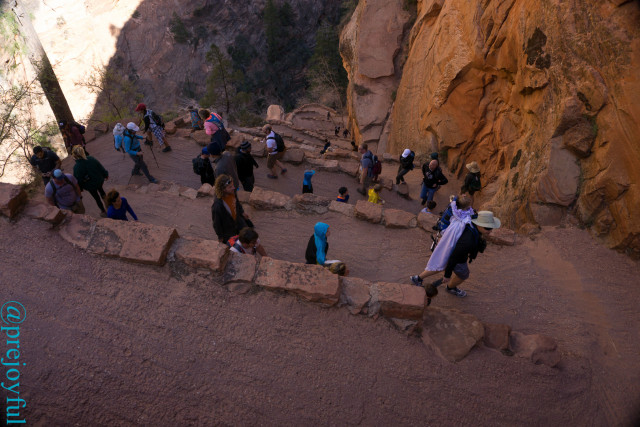 Crowds on the Angel's Landing trail.