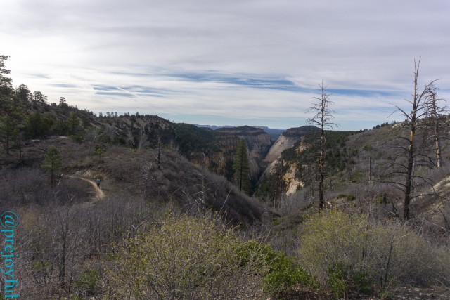 East Rim Trail.